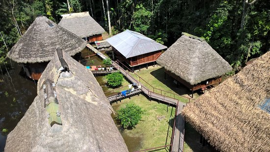 Cuyabeno Lodge: View from tree tower