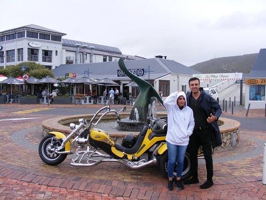 Centrala Kapstaden, Sydafrika: Hermanus