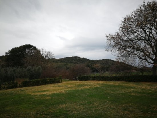 Agriturismo Monte Argentario: IMG_20180217_084259_large.jpg