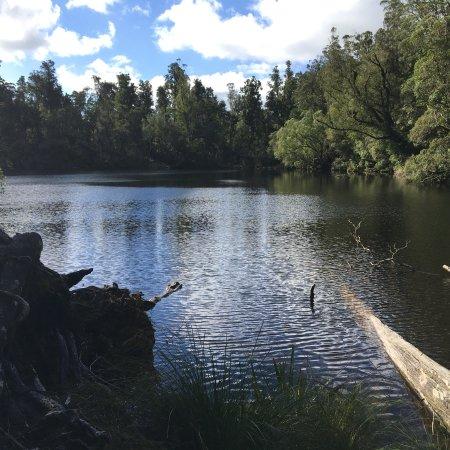 Lake Wombat Track