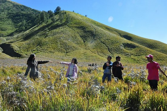 Probolinggo, อินโดนีเซีย: teletubbies hill in bromo mountain area, a place similar to a hill in a teletubis movie, and we