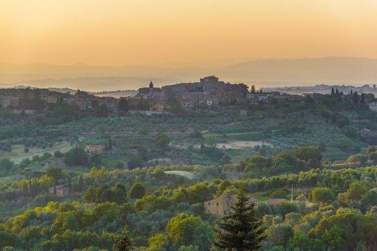 Castelmuzio, Italy: Vista terrazza possibilità di cenare o pranzare con supplemento