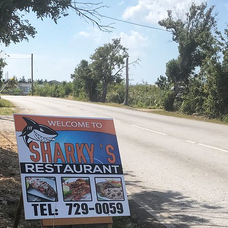 West End Village, Anguila: Lunch at Sharky's