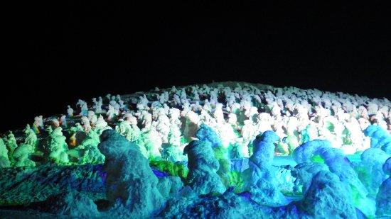 蔵王樹氷 (山形県 山形市)