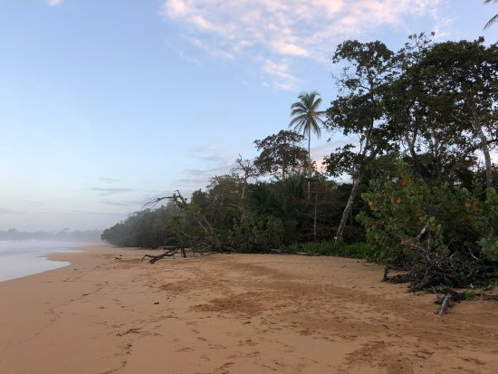 Playa Bluff: Beach in the morning