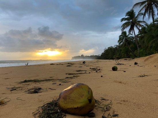 Playa Bluff: Beautiful sun dawn