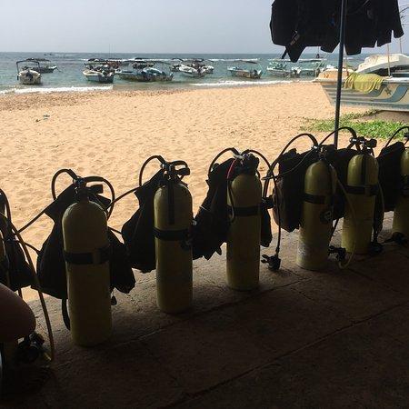 International Diving School : photo0.jpg