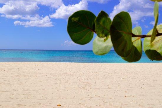 Saint Michael Parish, Barbados: Brandons Beach