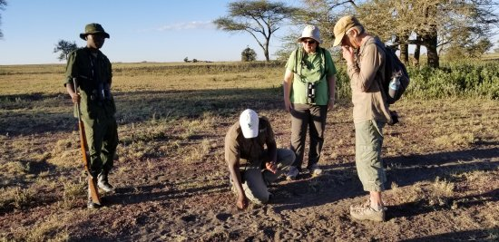 Wayo Africa: James and Elias showing us something