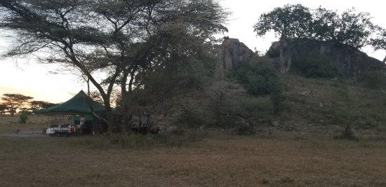 Wayo Africa: lopi behind the eating area