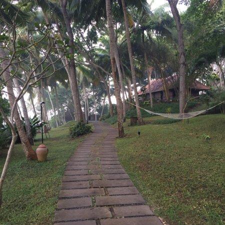 Niraamaya Retreats Surya Samudra: photo2.jpg