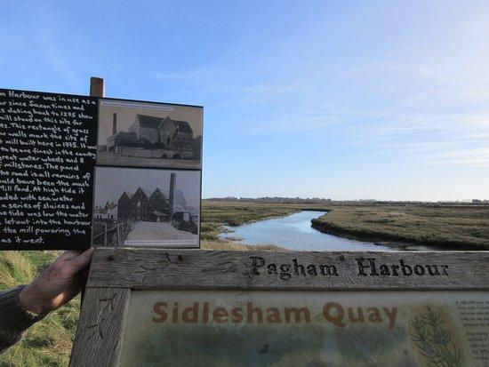 Sidlesham, UK: nice walks