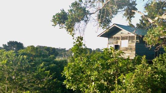 Hotel Bentota Village: Treehouse Camp das solltet ihr euch nicht entgehen lassen