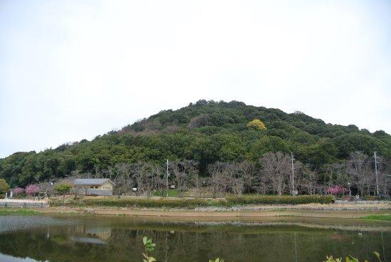 橿原市照片