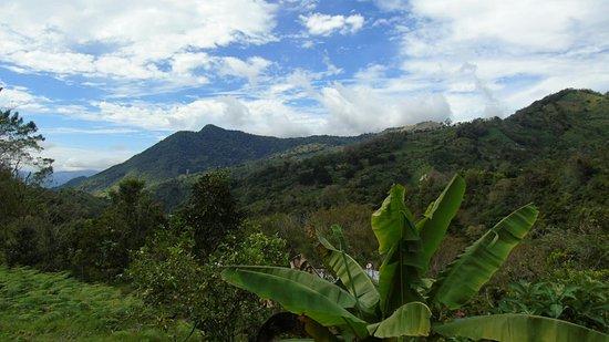 Chirripo National Park, كوستاريكا: DSC01751_large.jpg