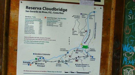 Chirripo National Park, كوستاريكا: DSC01834_large.jpg