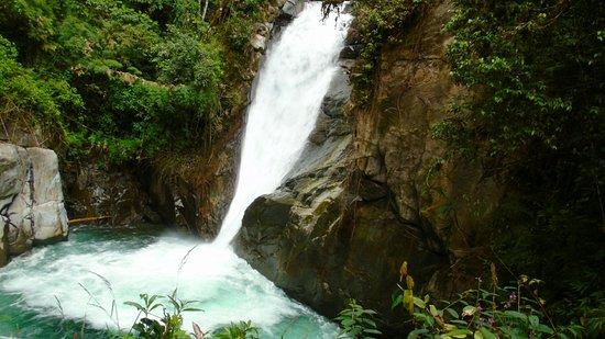 Chirripo National Park, Costa Rica: DSC01809_large.jpg