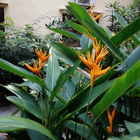 Hotel Puri: IMG_20180211_212115_329_large.jpg