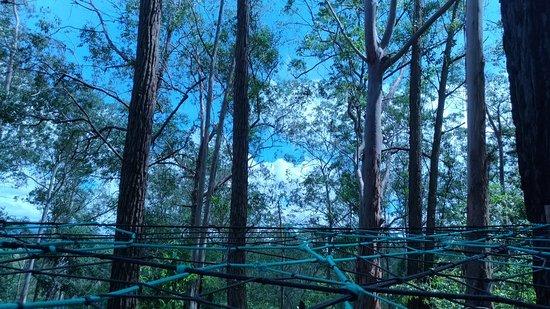 Uana Ete Jardim Ecologico: P_20180217_113744_vHDR_On_large.jpg