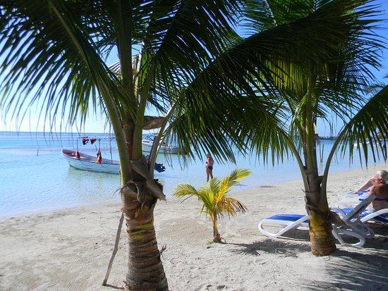 Resort Boutique El Fuerte: Spiaggia
