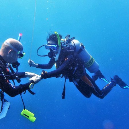 Action Divers: photo0.jpg