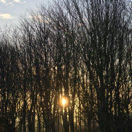 Dilton Marsh, UK: photo0.jpg