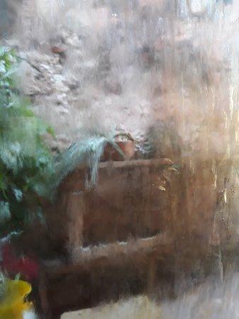 El Boliche Cebicheria: 20180217_143050_large.jpg