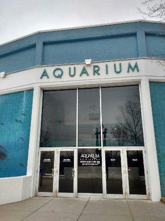 Aquarium of Niagara: IMG_20180217_131734614_HDR_large.jpg