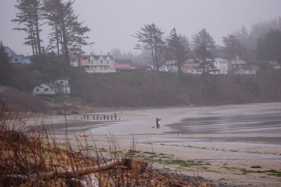 Netarts, Oregon: View looking south from the beach.
