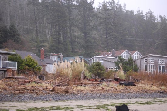Netarts, Oregon: View looking back towards the Happy Camp from the beach. Falcon's Perch is one of the tall ones.