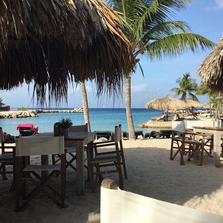 Lions Dive & Beach Resort Curacao 사진