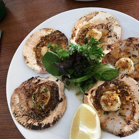 Barrenjoey House Restaurant Reviews