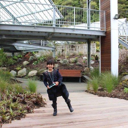 New Plymouth, Nieuw-Zeeland: photo9.jpg