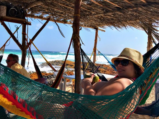 cozumel cruise excursions   private tours  beachside hammocks by taco shack   totally beachside hammocks by taco shack   totally relaxing      picture      rh   tripadvisor