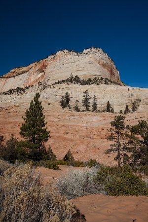 Zion Canyon Scenic Drive: entrance 2