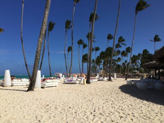 Picture Of Paradisus Punta Cana Resort