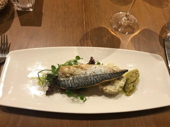 Glasbury-on-Wye, UK : Mackerel - starter