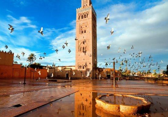 Morocco BnB Travels