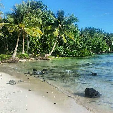 Back Of The Ute Samoa
