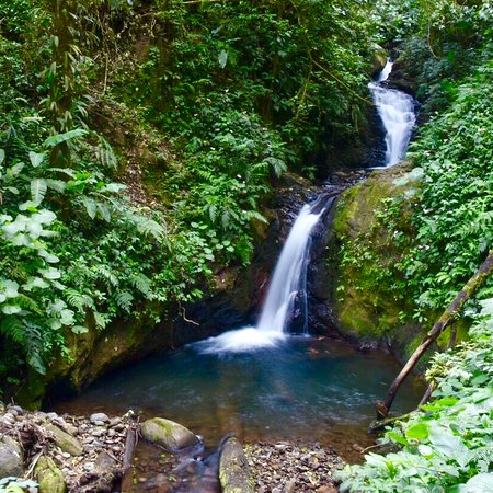 Monteverde Cloud Forest Biological Reserve: Cascada