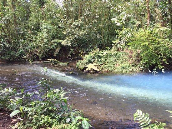 Tenorio Volcano National Park, Costa Rica: Aquí se observa cómo la unión de los minerales de 2 ríos junto a la luz del sol producen la ilus