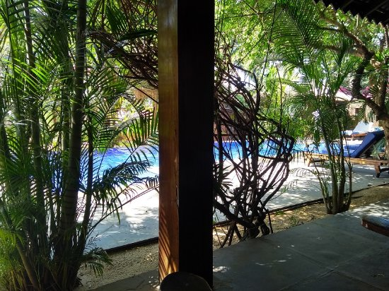 Raman Cottages : View from pool view rooms entrance