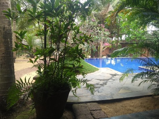 Raman Cottages : pool and path on the right taking you to beach rooms and further to actual beach