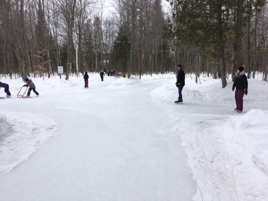 Parc John-H. Molson Outdoor Skating Rink