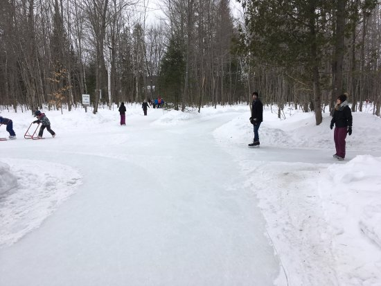 Parc John-H. Molson Outdoor Sakting Rink