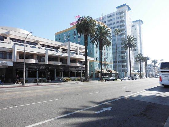 Ocean Avenue: 最もサンタモニカらしい通り