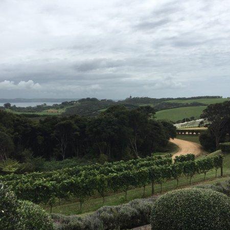 Auckland Fine Wine & Food Tours: photo1.jpg