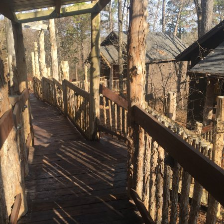 Oak Crest Cottages and Treehouses: photo1.jpg