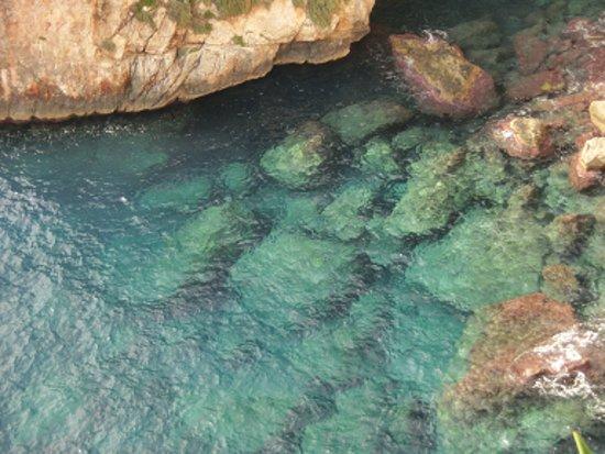 Zurrieq, Malta: 海水がエメラルドグリーン