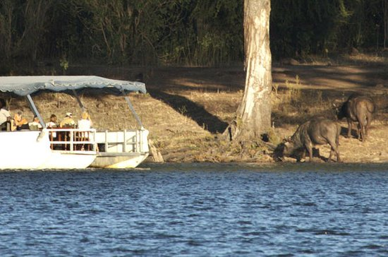 Sunset Cruise on Chobe River with...